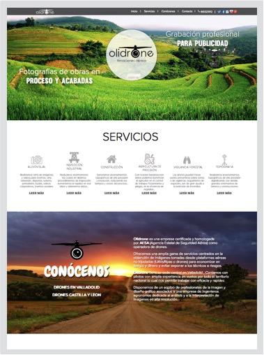diseño web profesional, tiendas online a medida, posicionamiento web tiendas, diseño web profesional madrid, desarrollo tienda online, posicionamiento web profesional